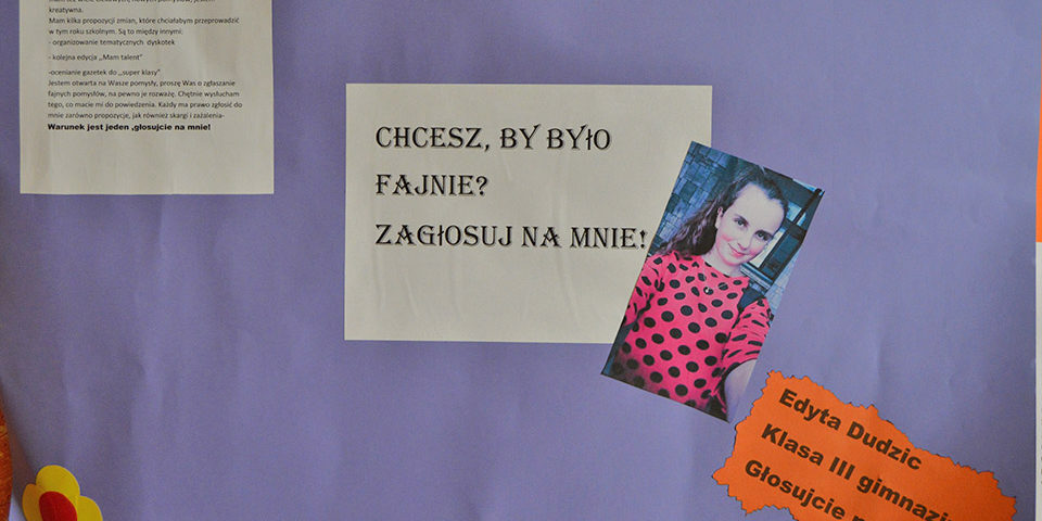 Plakaty Wyborcze Niepubliczna Szkoła Podstawowa